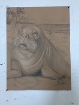 Animorph (Girl meets baby walrus), colored pencil, 2016.